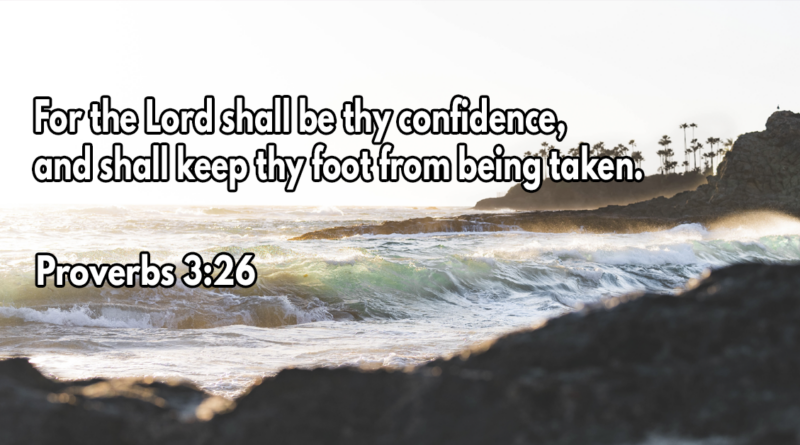 For the Lord shall be thy confidence, and shall keep thy foot from being taken