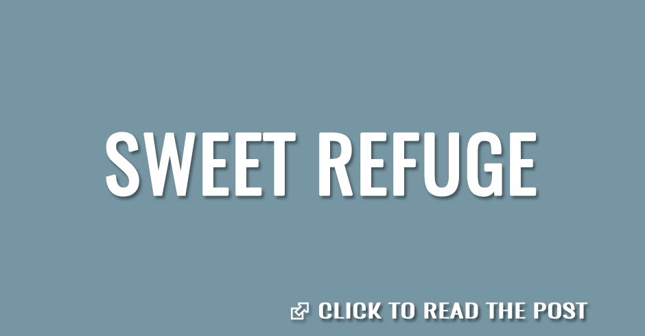 Sweet refuge