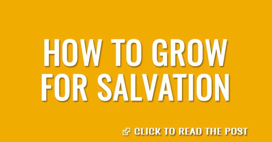 How to grow for salvation