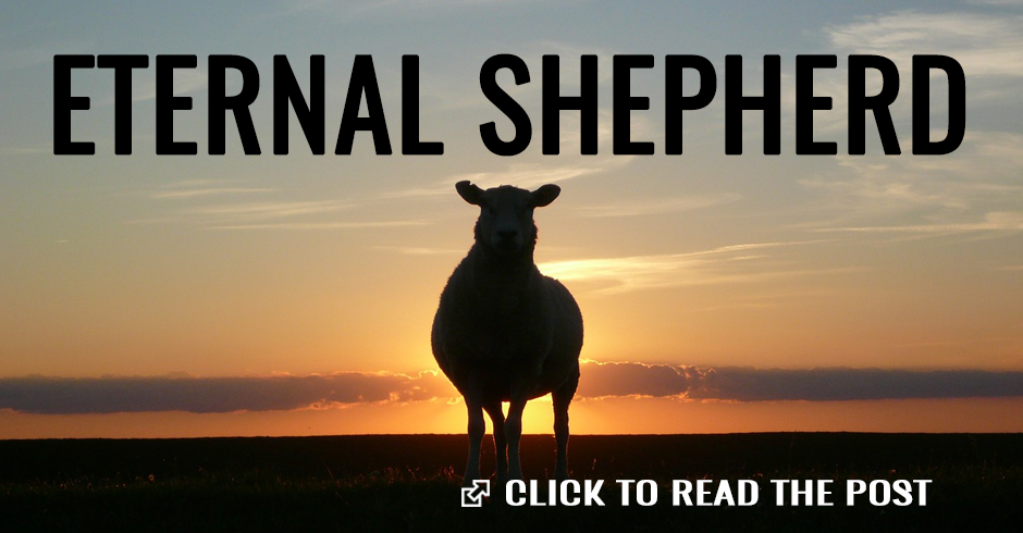 Eternal shepherd