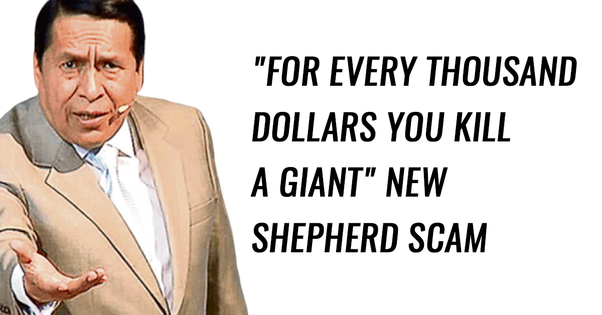 For every thousand dollars you kill a giant new shepherd scam