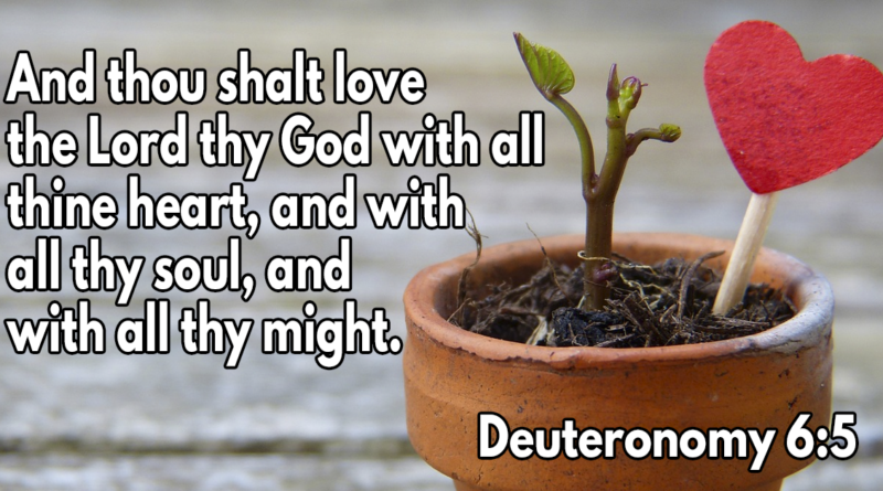 And thou shalt love the Lord thy God with all thine heart, and with all thy soul, and with all thy might
