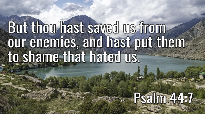 But thou hast saved us from our enemies, and hast put them to shame that hated us