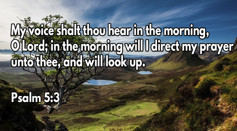 My voice shalt thou hear in the morning, O Lord; in the morning will I direct my prayer unto thee, and will look up
